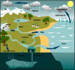 5.Sınıf Su Döngüsü Konu Özeti